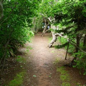 春のプリンス・エドワード島への旅‐キャベンディッシュ住居跡