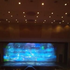 雪組『フォルティッシッシモ』『シルクロード』-東京宝塚劇場公演(11)