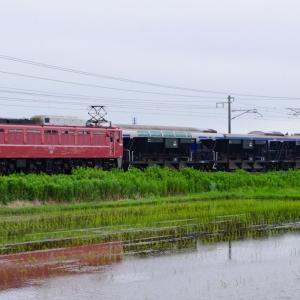 7/12 EF81 81牽引 水戸→郡山ホキ配給