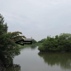 名古屋つれづれ・会