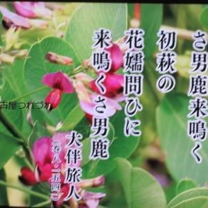 名古屋つれづれ・円