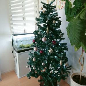 やっと出しました!クリスマスツリー2020年☆