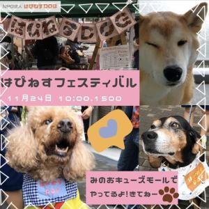 11/24は箕面イオンではぴフェス!