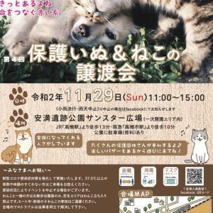 11/29 大阪府高槻市 〜安満遺跡公園〜