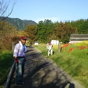 船岡神社 秋の大祭