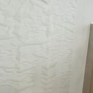 尾崎紀世彦とキャンディーズ