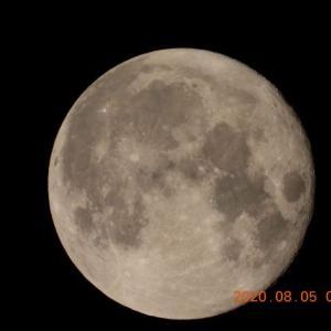 20200805-1  :  夕べのお月さん 満月かな~ (nikon coolpix p1000)