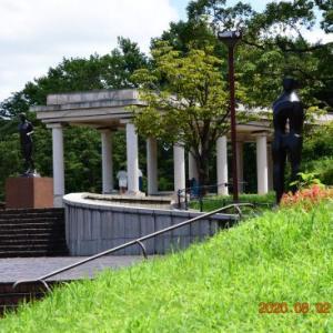 20200805-2  :  お散歩画像 青葉の森公園