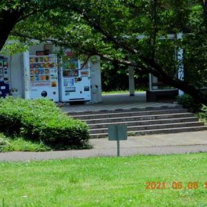 20210608-1  :  梅雨の中休みか(笑) 青葉の森公園から