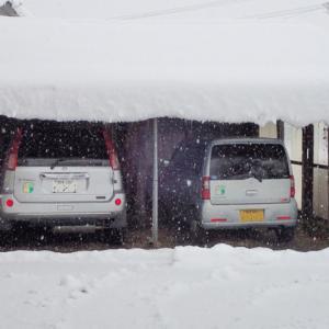 岩手から雪便り