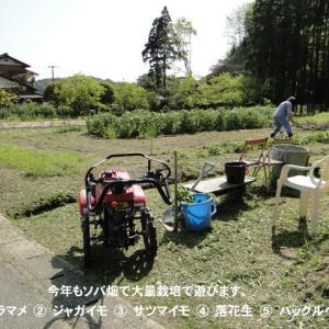 春の農作業の始動