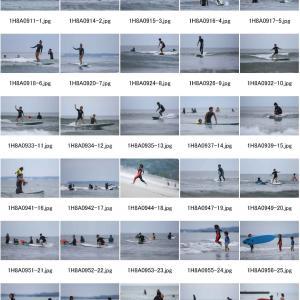 鳥人サーフィン祭り2020