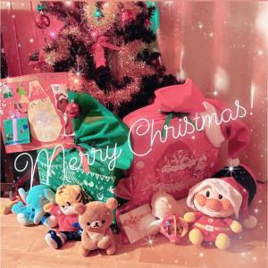 Merry Christmas!サンタさんは来たかな?