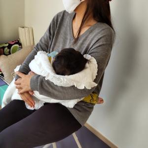 心に寄り添う!を大切にしています 日吉日吉本町 綱島 女性のためのサロン 子連れ大歓迎
