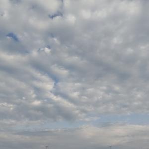 最新☆5月の営業日お知らせ 日吉 綱島 新吉田 高田 女性のための骨盤ケア 姿勢調整サロンYua