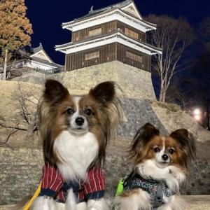 上田城の櫓と一緒に