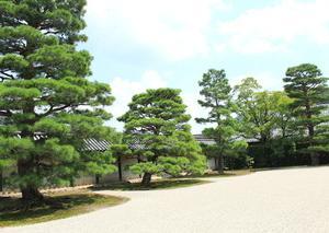 京都の旅 7月30日 2泊3日 二日目③