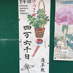 東京  浅草の 「ほおずき市」は7月9日(木)と10日(金)です