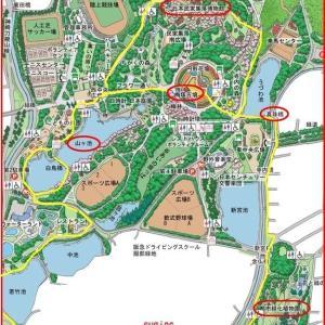 ゆっくりと紅葉・服部緑地公園
