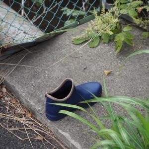 片方だけの靴