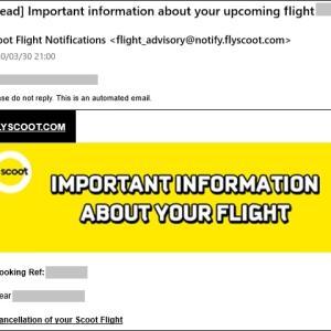 遂にフライトキャンセル