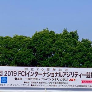 FCIインターナショナルアジリティー競技会1