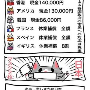 「news23」小川彩佳キャスター、安倍首相の布製マスク2枚配布に