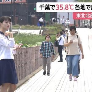 7/31 危険な暑さ(´・ω・`)