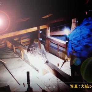 シロアリの秘密基地  天井裏のシロアリの巣 撮影/大脇シロアリ/Japan Kagoshima Izumi CityOwaki termite