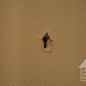 救世主なるか??大失敗の壁穴修復、その後
