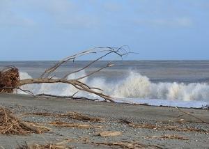 昨日の台風で改めて自然災害は怖いと実感しました。