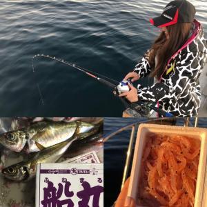 サバを料理✨しめ鯖編