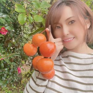 柿ってかわいい!?