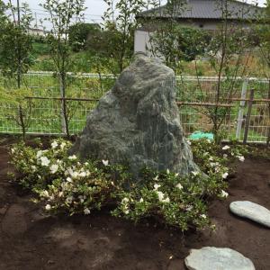 石の周りにサツキ  キャラも。。。