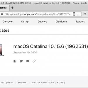 macOS Catalina 10.15.6 Supplemental Update (19G2531) リリース?