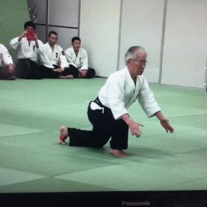躰道シーラカンス整体操 第43回範士大会演武
