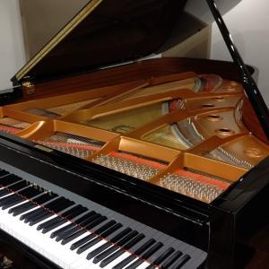 ピアノって、なんて魅惑的な楽器なのでしょー!!!(*≧з≦)♪