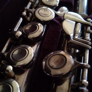 【ハジメテの管楽器】フルート@4回目!゚+。:.゚(*゚Д゚*)゚.:。+゚