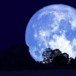 今日は満月ですね