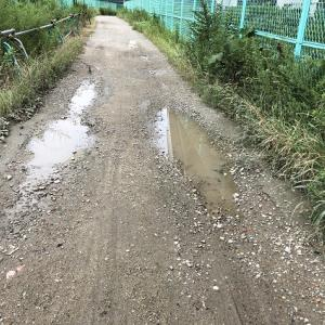 水たまりのできる道