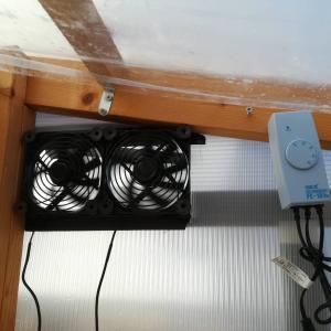 温室に自動換気扇をDIYしてみた。≪PCファン×アクアリウム用逆サーモ≫