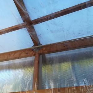 温室の内張りの仕方とその効果。≪温室DIY×保温×冬対策≫