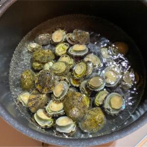 【案外美味】マツバガイで醤油煮作ってみました。