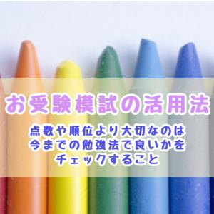 小学校受験の模試の活用法 受験対策を始めて5ヶ月で15位以内