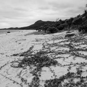 想い出はモノクローム - 沖縄 Part.52 -