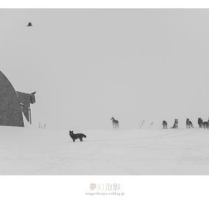 雪の情景 - Part.4 -