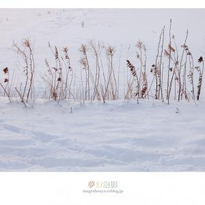 雪の情景 - Part.10 -