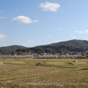 美波羅川の千本桜 【ロードバイク】