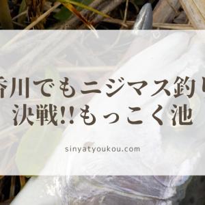 香川でもニジマス釣り、決戦!!もっこく池