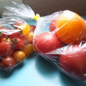 到来物の夏野菜(。・ω・。)ノ♡LOVE(。・ω・。)ノ♡